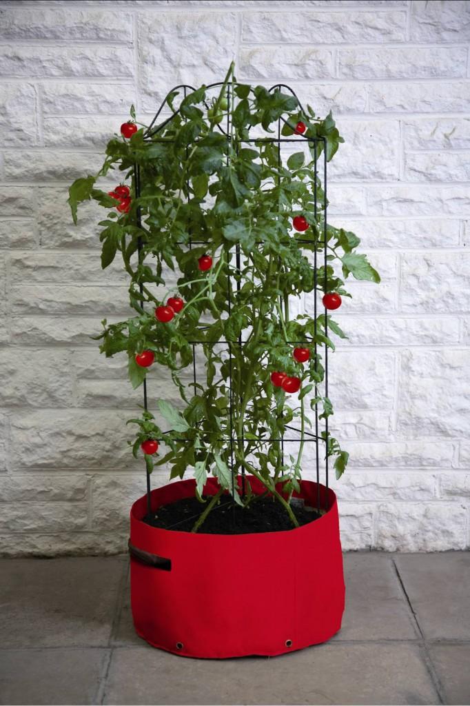 Pflanzsack_Tomaten_Tomato_Patio_Planter